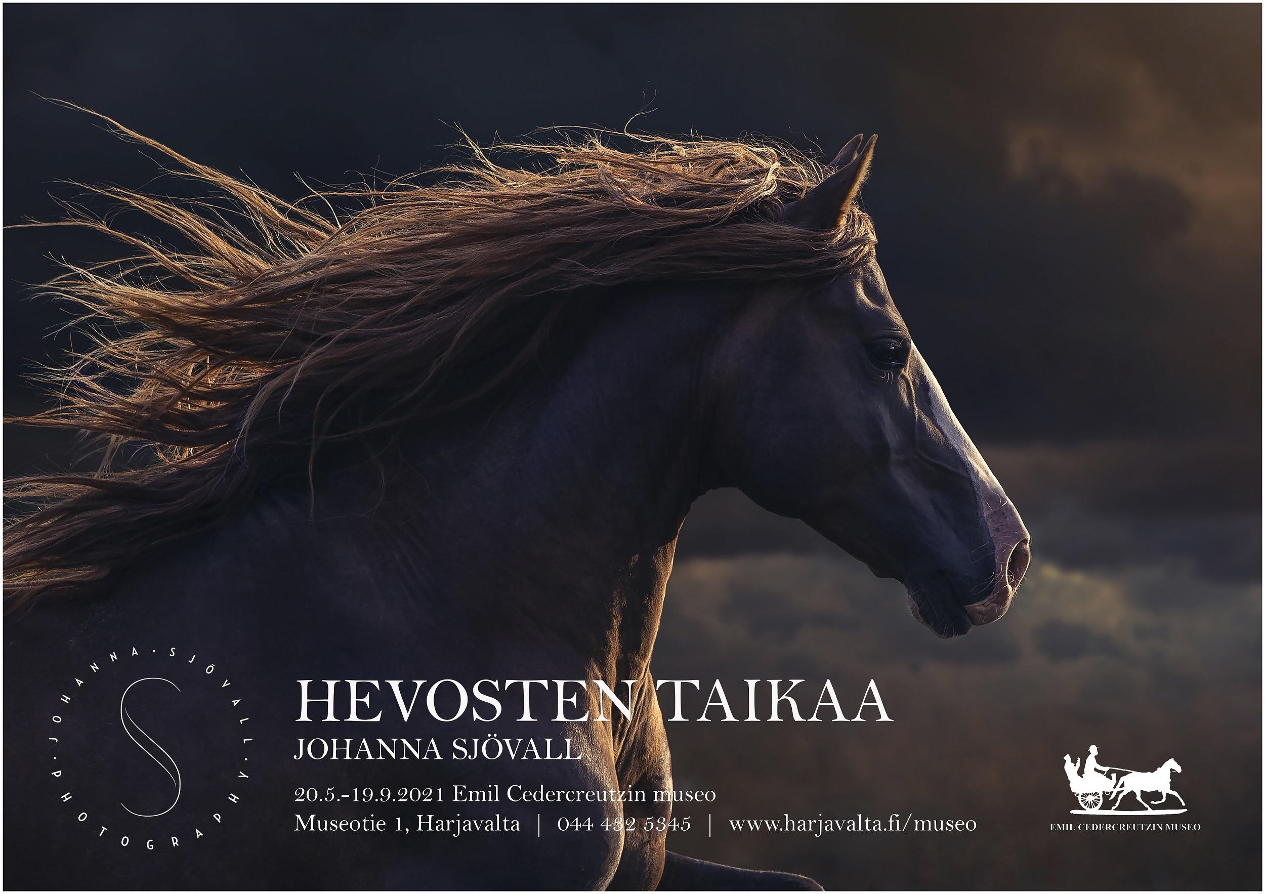 Johanna Sjövallin näyttelyn juliste.