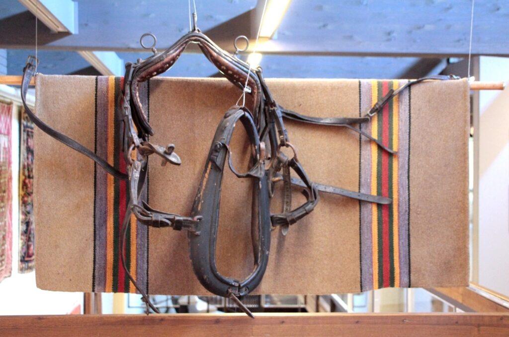 Kuvassa Emil Cedercreutzin museon kesäkuun kuukauden esine, hevosen valjaat museon kokoelmista.